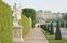 Statyer och formklippta häckar i slottsträdgården i Belvedere.