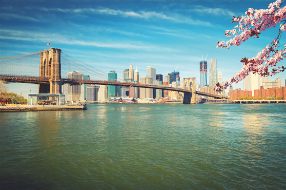 Vy mot Brooklyn bridge och Manhattan. Foto: Shutterstock