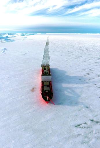 Arktis har uppvärmts minst två gånger så snabbt som resten av världen i många år och området med havsis har minskat med en lika stor areal som Storbrittanien sedan 2001