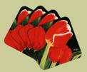 Glasunderlägg/Coasters - Vårlöftet/Spring Promise