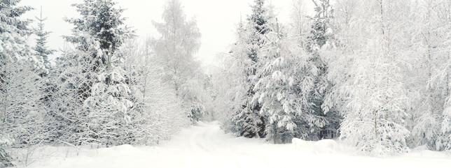 Tog en bild på vägen hemifrån när det snöat en hel natt. Mysigt!