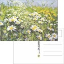 Kort/Card - Vykort/Postcards - Vykort/Postcards - Blomsterhavet/The Sea Of Flowers