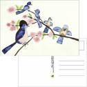 Kort/Card - Vykort/Postcards - Vykort/Postcards - Vårkvitter/Spring Tweet