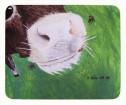 Musmatta/Mousepad