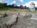 Klocktornet putsas och schaktning pågår för dränering av kistgravar