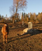 Utfodringshäck Klara