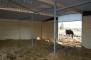 Ligghall 8,65x9,175 m - 78 m²