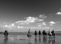 Mindfulness på häst turridning