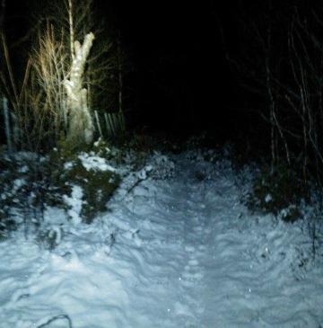 En första advent, med skidor, löpning och julmys :-)