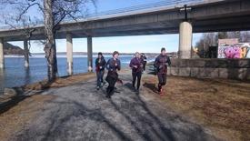 Löpgrupp frösö bron