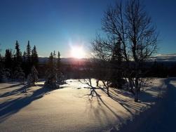 Firat nyår i Vålådalen, flera skidturer i fantastiska vinterfjäll. Tid för reflektion.