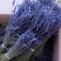 Årets lavendel! Två härligt doftande lavendelbuketter direkt från Provence! - Två härligt doftande extra blå buketter.
