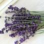 Ekologiska Lavendel i lösvikt 200g.