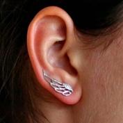Änglavingar örhängen med cubic zircon