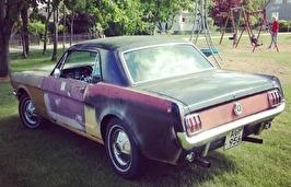 Adams Mustang 65:a