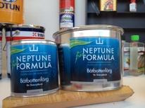 Neptune Formula
