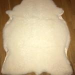 Nr: 16096. Tackskinn, finull. Vitt. Ekoberedning 35 mm. 110x90cm. Tjockt och mjukt med tendens till lockar. Jämnt och vackert skinn. Pris: 1500kr.