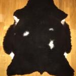 Nr: 18030. Finullsskinn. Svart med vita små fläckar. Ekoberedning 35mm. 96x80cm. Mjukt skinn med en pytteliten fläck utan ull. Pris: 1300kr