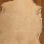 Nr: 20055. Korsningsskinn Finull/Gotland, vitt. Ekoberedning 35mm. 99x80cm. Både mjukt och tjockt med glans och lite lock. Svagt gulflammigt. Pris: 1400kr.