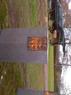 BÜlsta grav vÜrd HÜbo kyrka 003