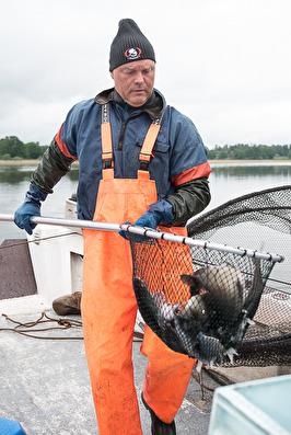 Juli-augustinumret. Fiskelycka med fiskaren Anders.