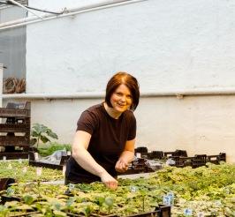 Det är full fart i växthusen på Solåkers handelsträdgård. Här är Cecilia Burge i färd med att pyssla om plantorna.