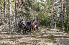 I juninumret besöker vi Edeby gård mellan Stallarholmen och Mariefred och tar oss en tur med islandshästar.