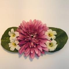 Aster med vit blomster