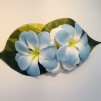 Blå/vit hawaii