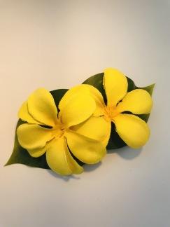 Gul hawaii