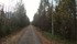 Denna bilden föreställer inte banvallen utan en landsväg som gått alldeles invid banvallen, men nu verkar vägen har fått en nyare sträckning lite mer västerut, så både väg och banvall vilar i lugnet.