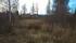 I Hedenäset finns skolor, men lanthandeln som skymtar på bilden...