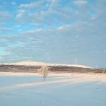 På skidor mot Lappberg.