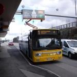 Samm buss,...