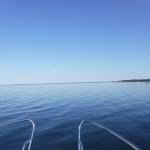 Havet är nästan spegelblankt.