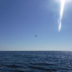 Ute på öppet hav kom ett flygplan och flög nära mig.
