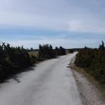 En väg på Fårö.
