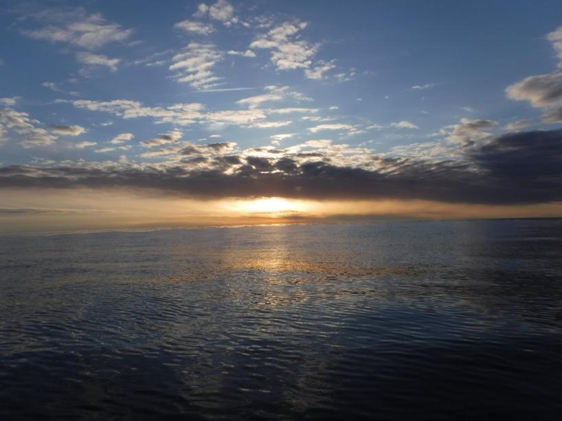 Kvällen var fin under min färd från Gotland till Öland.