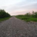 På väg mot Kalixforsbron följde jag delvis den gamla banvallen som fram till sommaren 2012 var järnvägen till Kiruna.