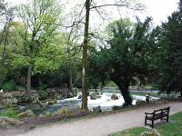 Engelska trädgården i München...