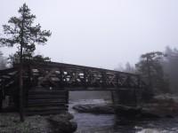 En av flera rejäla broar över Muddusälven i nationalparken.