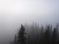 Utsikt från fågeltornet/utsiktstornet vid Muttosluoppal.