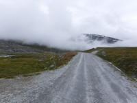Dimman hänger i luften ovanför vägen som slingrar sig framåt.