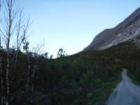 Jag följer vägen upp genom Norddalen från Fjellbu.