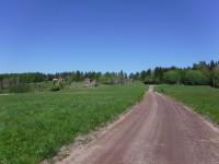 Längs en grusväg på Norra Ulvön.