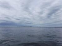 Denna dag var det ett lugnt och stilla hav att färdas på.