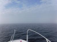 Det blir en del dimma under min havsetapp.