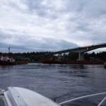Vid Pitsundsbron.