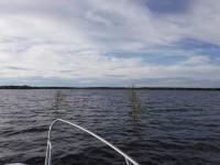 På väg in mellan björkruskorna mot Vuono Fiskehamn.
