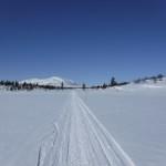 Lättsam skidåkning i snöskoterspår.